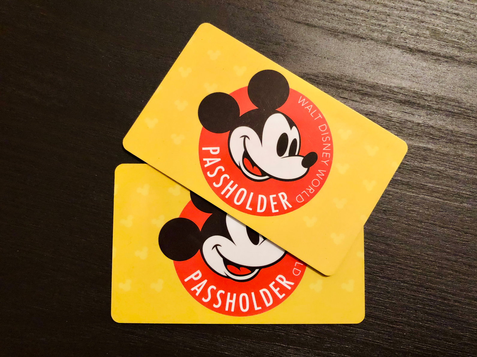 disney annual passes