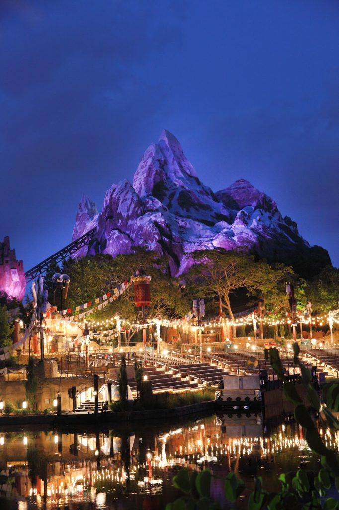 everest at night in animal kingdom park