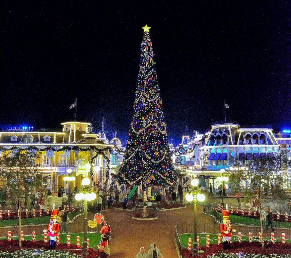 Christmas tree at magic kingdom