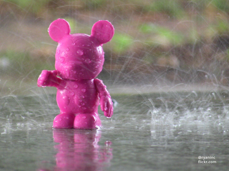 Disney Rainy Season