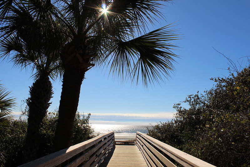 Disney DVC Hilton Head Island Resort Beach Walkway