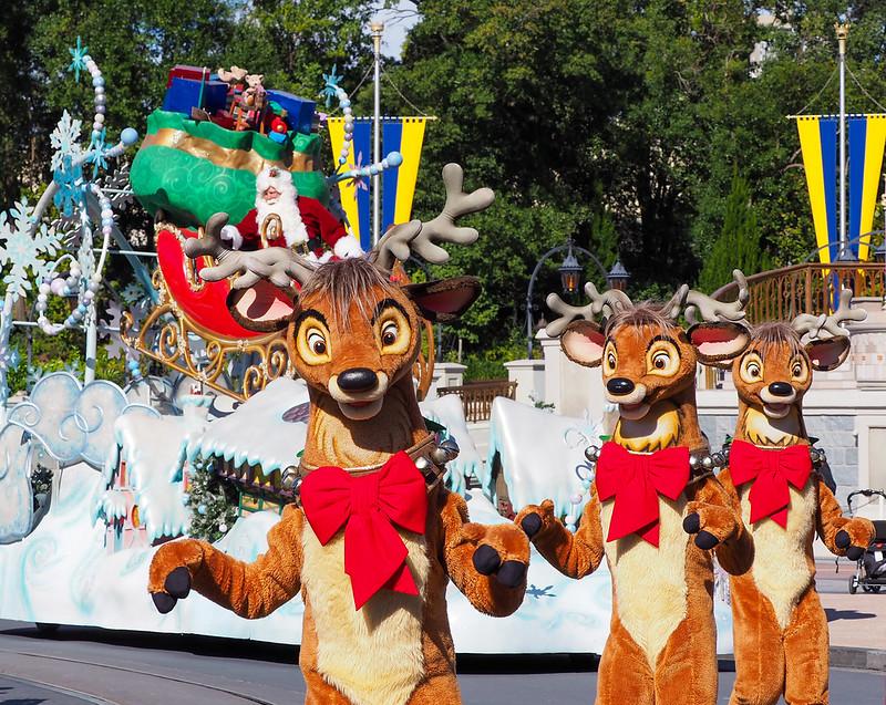 Winter at Disney World