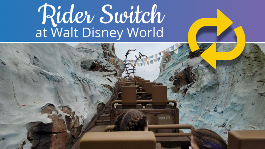 How To Use Rider Switch at Walt Disney World Slides