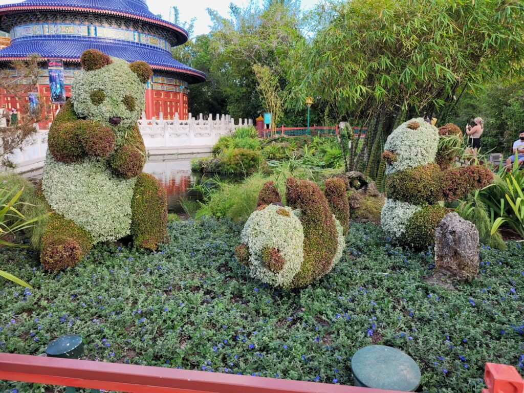 Panda Topiary