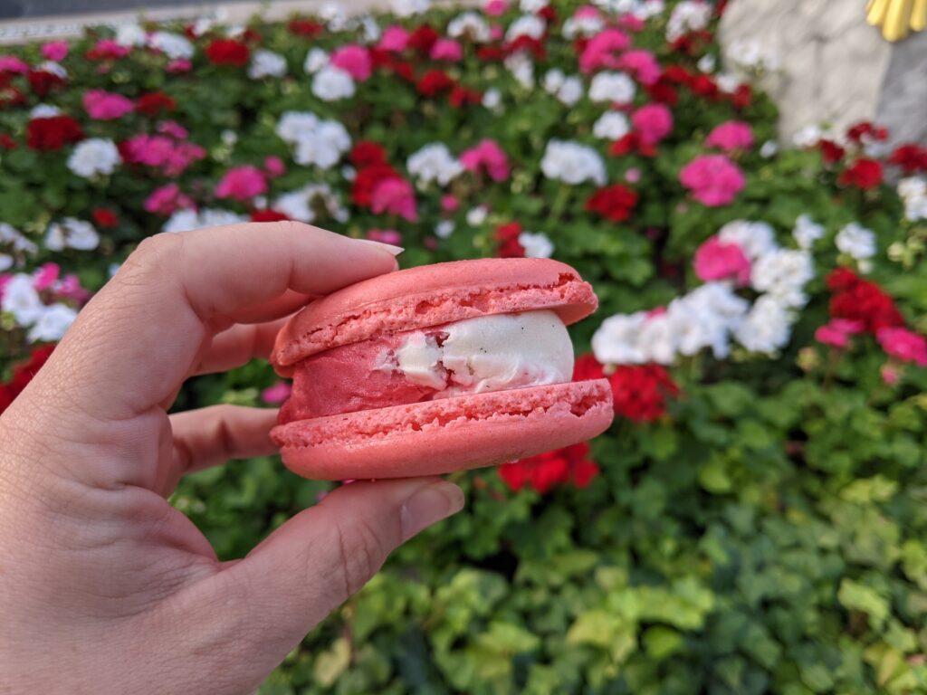 Seasonal Macaron Ice Cream Sandwich - Raspberry