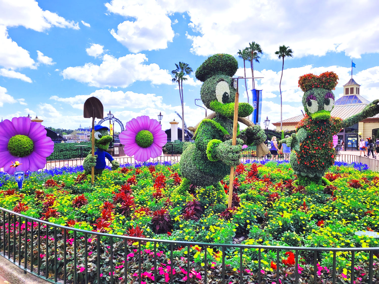 Donald and Daisy topiary at EPCOT Flower and Garden Festival