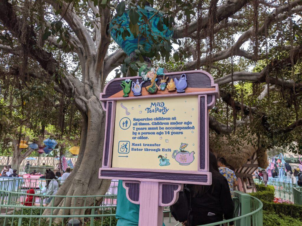 Sign in Mad Tea Party Queue - Disneyland