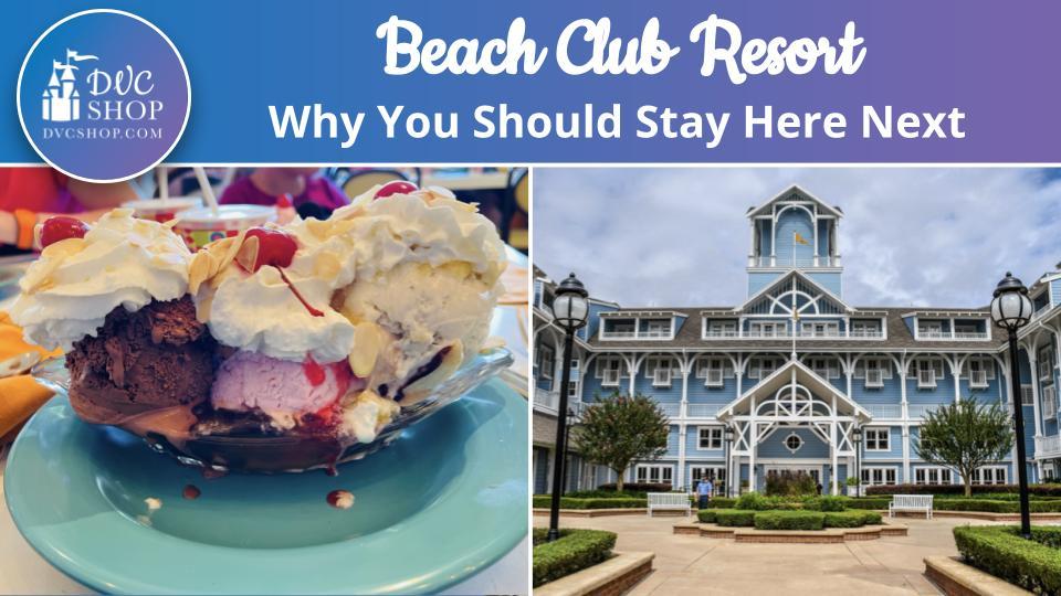 Beach Club - 3 Reasons To Stay Here