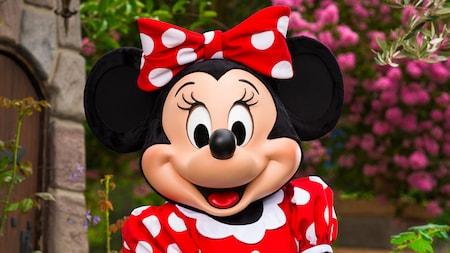 Minnie & Friends – Breakfast in the Park