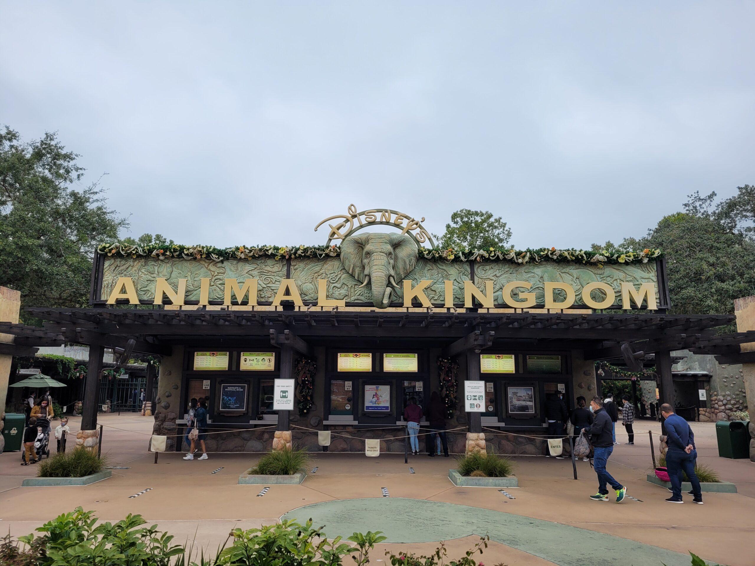Animal Kingdom Disney Park Entrance