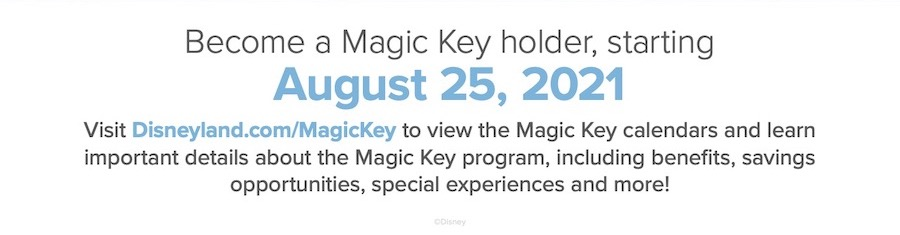 Magic Key Annual Pass starting August 25 2021