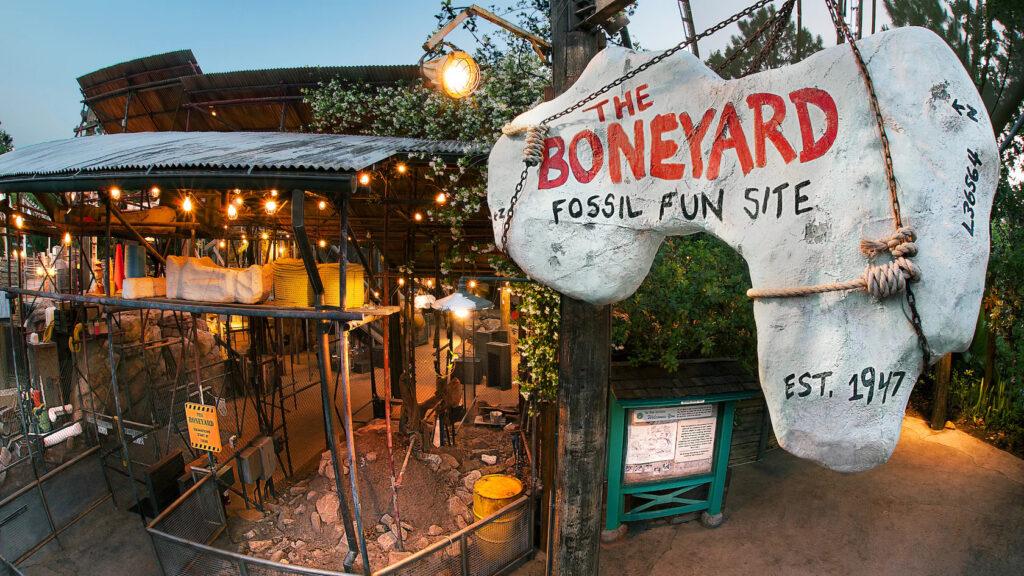 The Boneyard at Animal Kingdom Theme Park